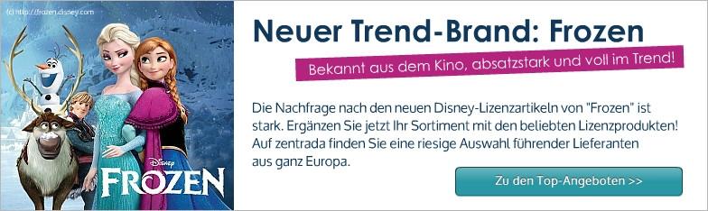Frozen Disney Eiskönigin Lizenzartikel